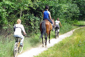 Sports dans la forêt de Rambouillet